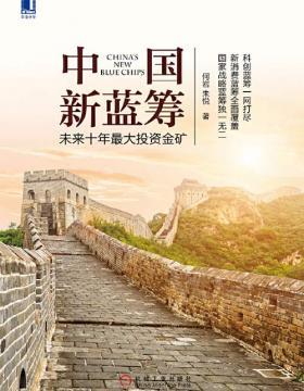 中国新蓝筹:未来十年最大投资金矿 慧眼看PDF电子书