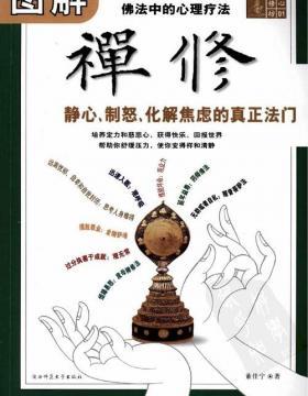 图解禅修 佛法中的心理疗法 全彩扫描版 慧眼看PDF电子书