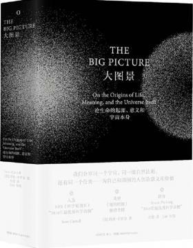大图景 论生命的起源、意义和宇宙本身 慧眼看PDF电子书