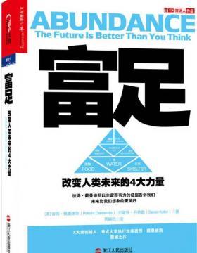 富足:改变人类未来的4大力量 慧眼看PDF电子书