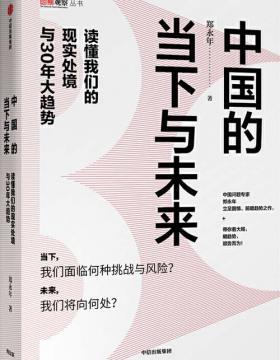 中国的当下与未来 带你读懂当下中国面临的风险与挑战 慧眼看PDF电子书