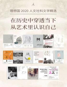 理想国2020人文社科文学精选(套装共17册)在历史中穿透当下 从艺术里认识自己