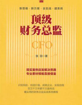 顶级财务总监 扫描版 PDF电子书