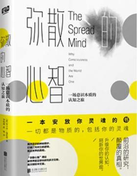 弥散的心智 一本安放你灵魂的书 PDF电子书