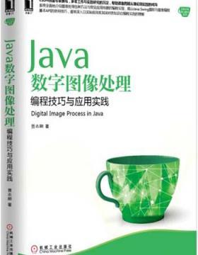 Java数字图像处理:编程技巧与应用实践 慧眼看PDF电子书