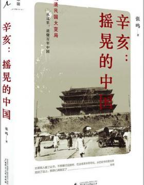 辛亥:摇晃的中国 晚清民国大变局 从这里读懂百年中国 慧眼看PDF电子书