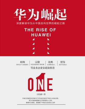 华为崛起 深度解读华为从中国走向世界的崛起之路 慧眼看PDF电子书