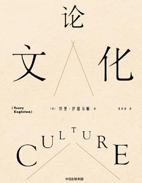 论文化 我们的文化是在丰富着,还是在贫瘠着?要洞悉这个世界,你还差一本《论文化》