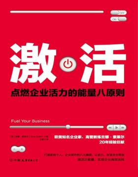 激活:点燃企业活力的能量八原则 在负能量盛行的时代里,激活正能量,实现企业高效运转