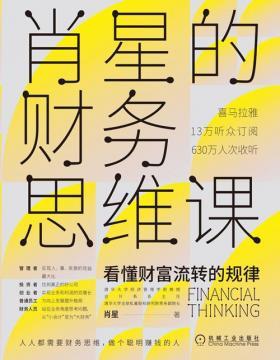 肖星的财务思维课 人人都能听得懂、学得会的财务知识 带你在财务的角度重新认识企业