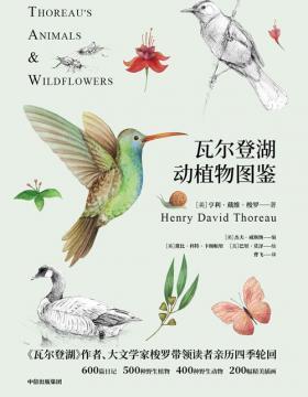 瓦尔登湖动植物图鉴 动物篇植物篇共2册 500种野生植物,400种野生动物,200幅精美插图