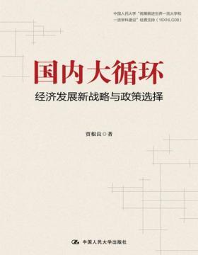 国内大循环:经济发展新战略与政策选择 看懂经济内循环的历史经验、实施机制、基本原理,看透全球化的本质与趋势
