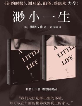 渺小一生(套装上下册)英国《卫报》21世纪百佳图书,爱总是所有问题的解答 因为有我,你不会独自向下跌落