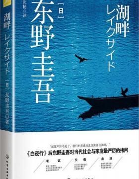 湖畔-东野圭吾-挑战人伦道德底线的突破之作-PDF电子书-下载
